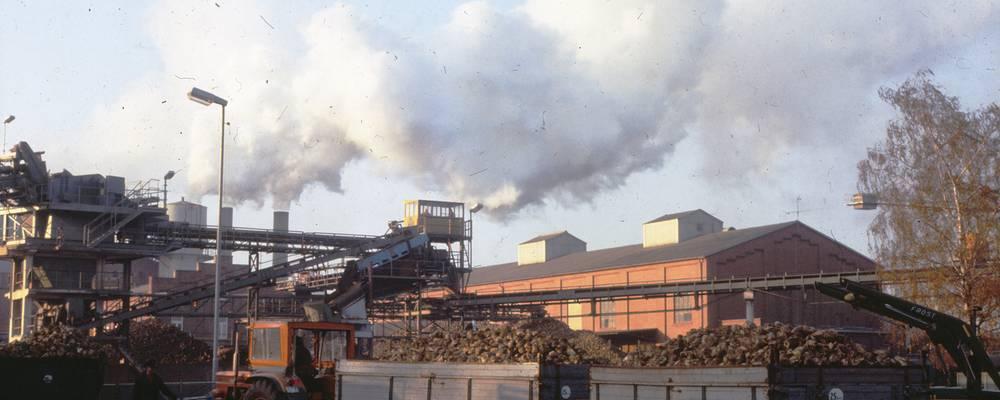 Zuckerfabrik Rethen Oktober 1979