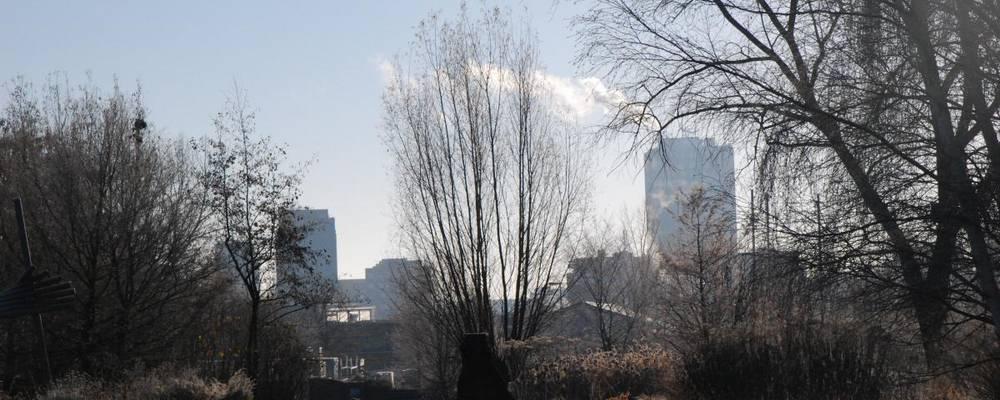 Blick aus dem Park der Sinne auf die Hochhäuser von Laatzen