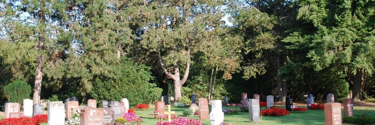 Gräber mit bunten Blumen auf einer Grünfläche