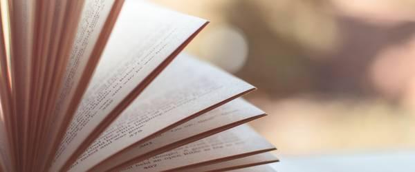 Seiten eines Buches