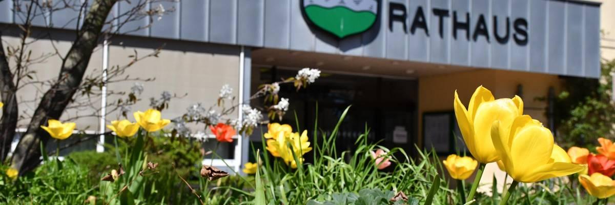 Rathaus-Eingang mit Tulpenbeet im Vordergrund.