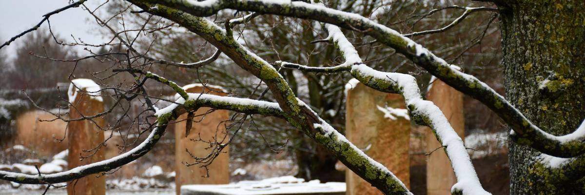 Äste von Schnee bedeckt, im Hinetrgrund eine Gruppe mit Steintisch und Steinstühlen