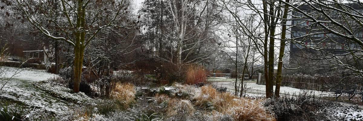 Rasenfläche, dahinter Bachlauf mit Gräser und winterlich kahlen Bäumen