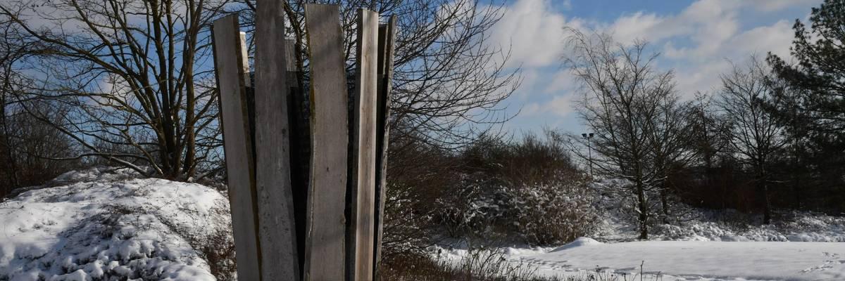 Blick auf eine Holzskulptur, dahinter erstreckt sich eine verschneite Fläche.