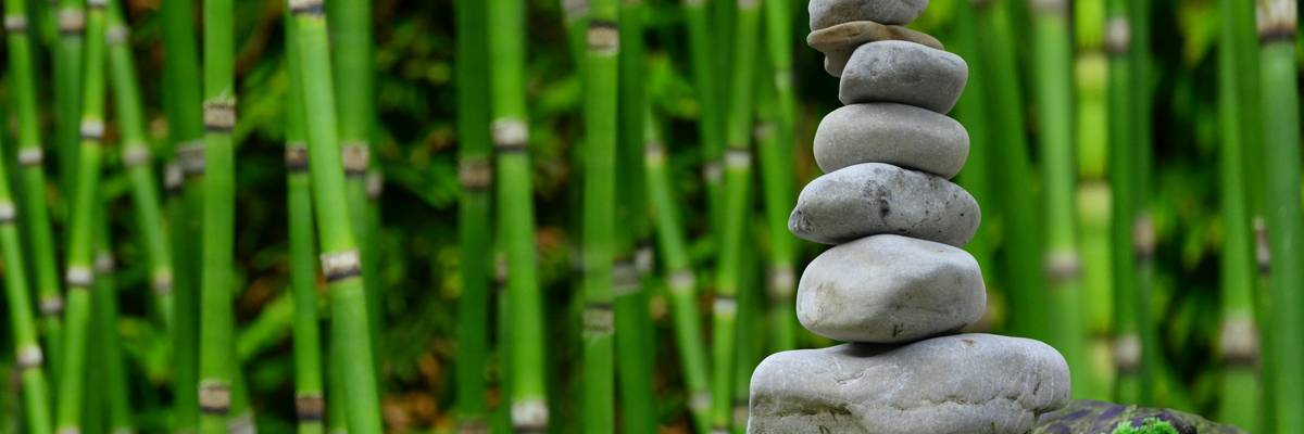 gestapelte Steinen vor einer Bambushecke