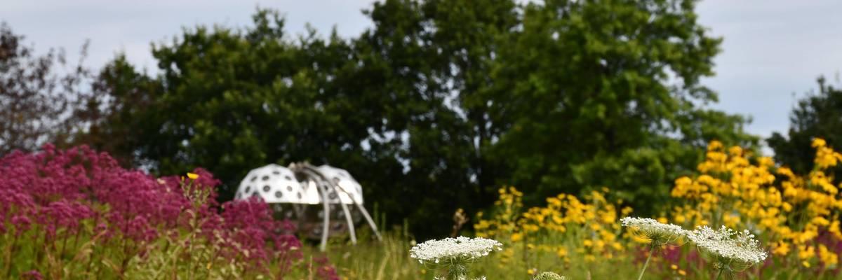 Blcik über ein blühendes Beet auf die Skulptur Insektenauge. Die Skulptur ist ein silberner Ball mit Glaseinschnitten, die Insektenaugen nachempfunden sind. ©Stadt Laatzen