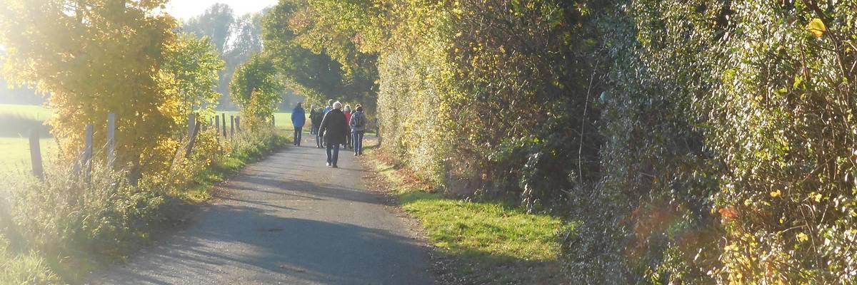 Wanderer auf einem Weg durchs Grüne ©Ilka Hanenkamp-Ley