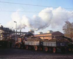 Menu: Stadtgeschichte