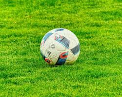 Menu: Vereine und Initiativen
