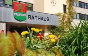 Rathauseingang mit Löwenzahn und Tulpen im Vordergrund ©Stadt Laatzen