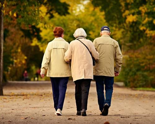 Grundsicherung im Alter (4. Kapitel SGB XII)