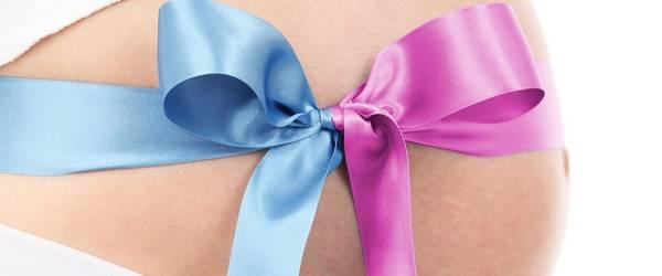 Bauch einer Schwangeren mit einer Schleife in blau und rosa ©Pixabay